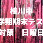 """<span class=""""title"""">桂川中 1学期期末テスト対策 日曜日</span>"""